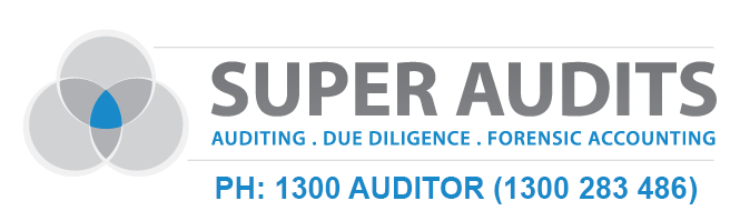 Super Audits Logo bluetext3